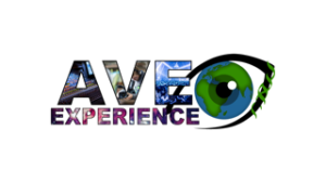 ave experience